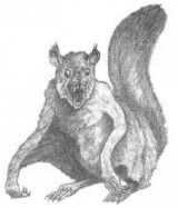 ptera-squirrel